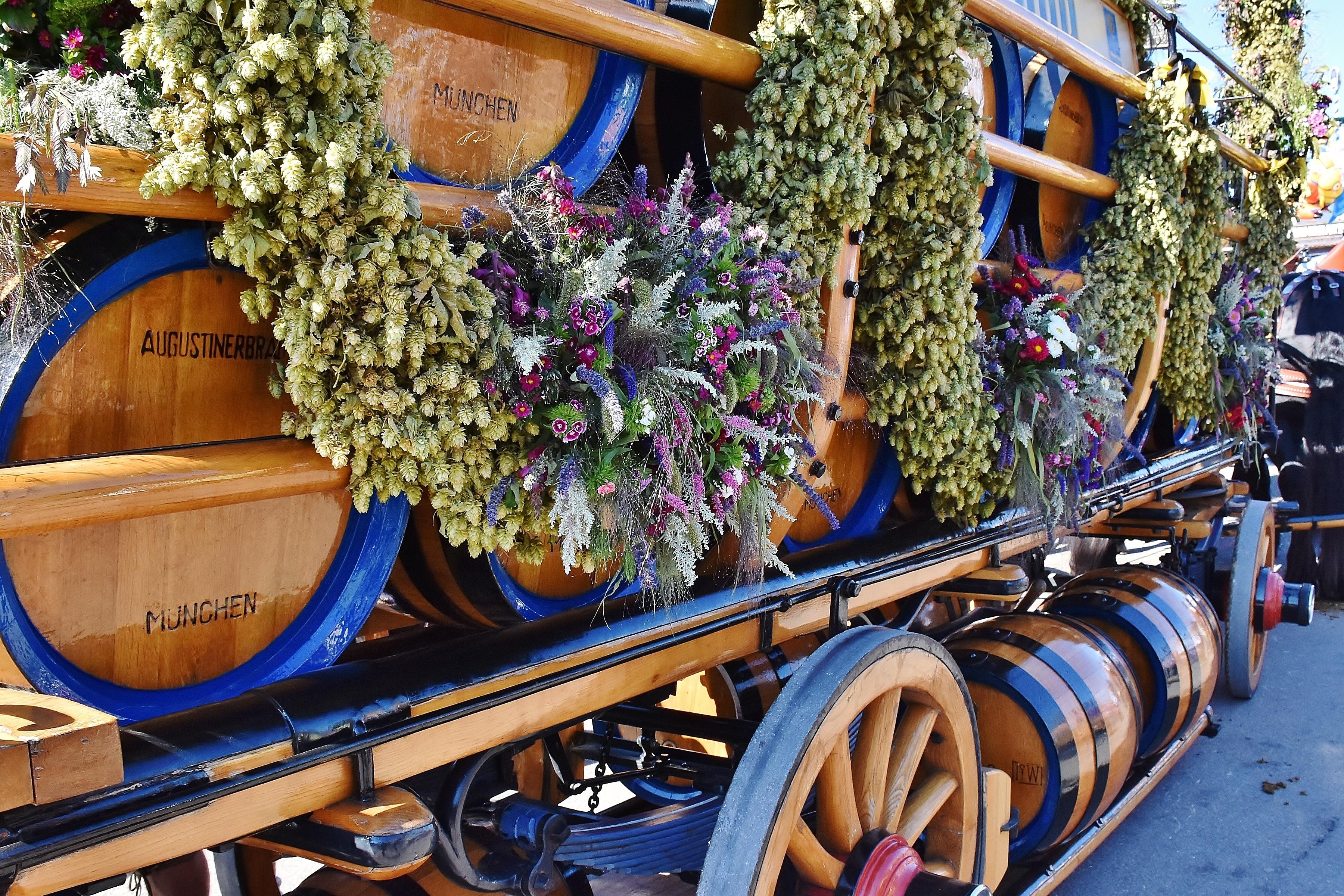 Oktoberfest beer dray wagon